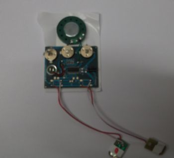 30 seconds Sound Recording Module with Leads